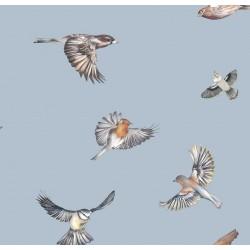 Tapeta Early Bird/Kolekcja Albion