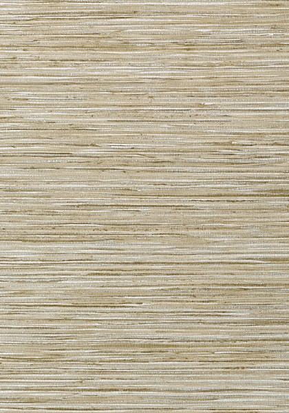 Jindo Grass Neutral on Metallic Silverr
